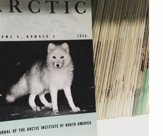 OUR TROVE OF ARCTIC LORE IS LOOKING FOR A GOOD HOME.